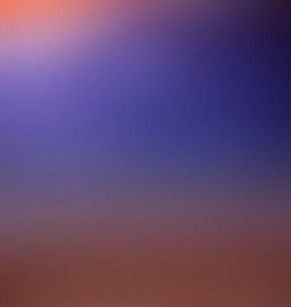 03_field