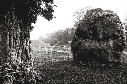 06_paulcaponigro