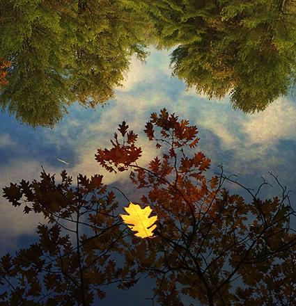 07_2014_Acadia_IMG_8277