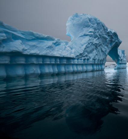 Antarctica LIV