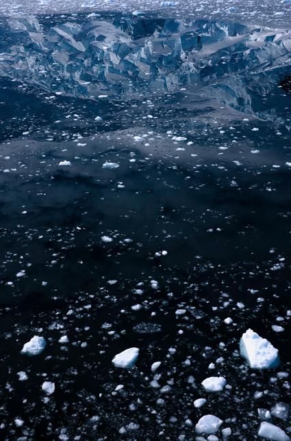 Antarctica XL