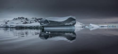 Antarctica CXCVI