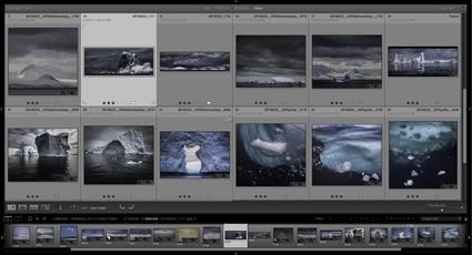 ContactSheet_Antarctica2014B_425