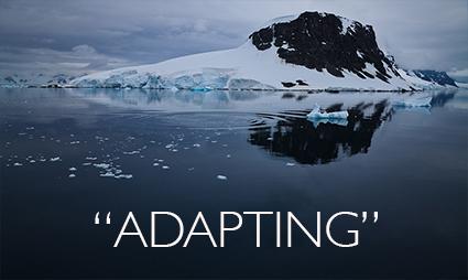 Quotes_Adapting