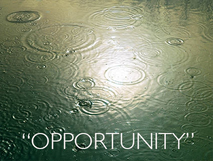 Quotes_Opportunity