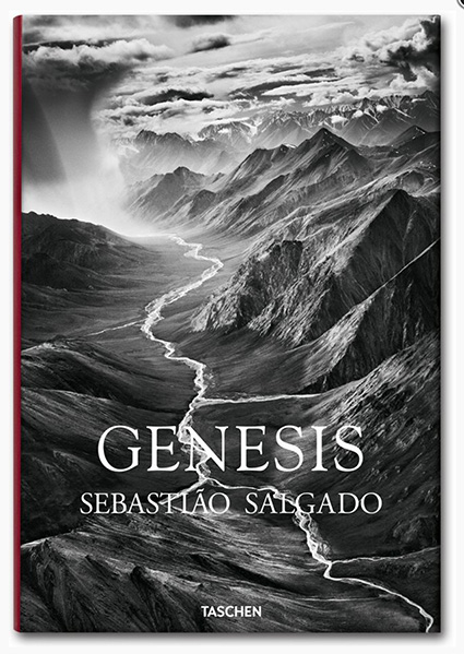 SalgadoGenesis_Book