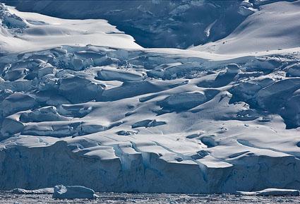antarctica_gullet