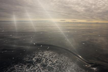 refraction_LX_425