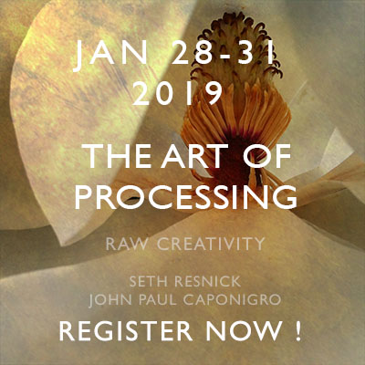 http://www.johnpaulcaponigro.com/files/6415/3954/0312/Icon_Workshops_Processing2019_340.jpg